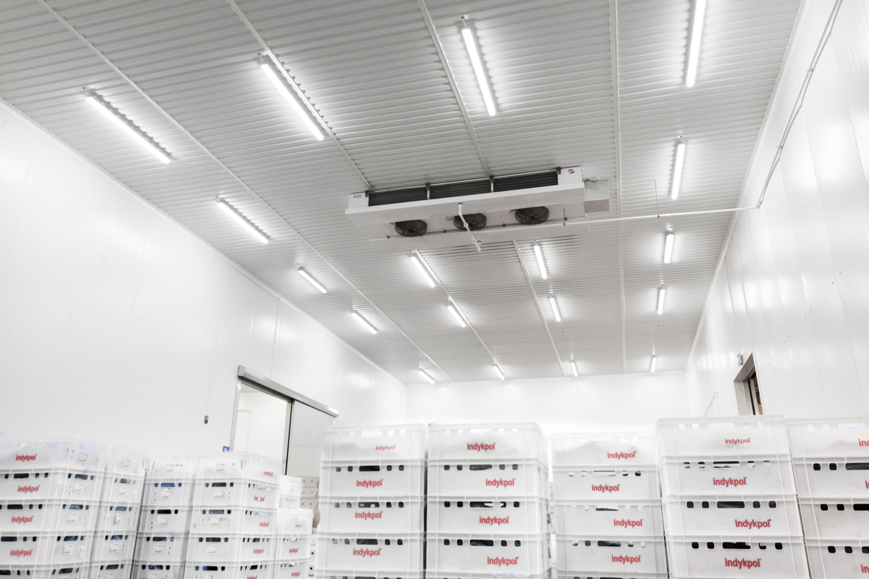 Modernisation of lighting in Indykpol