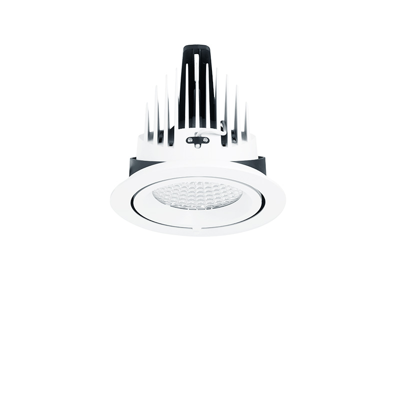 Downlight RC